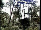 Horizontes da Memória, Sardoal, Memória Viva, 2001