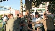 USA: Des câlins aux arbres pour montrer son amour à la nature
