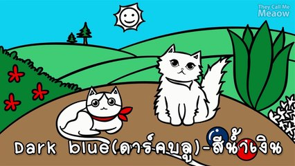 Theycallmemeaow | English with แมว - COLOUR สีต่างๆ