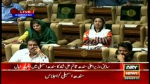 Qaim Ali Shah speaks in the Sindh Assembly