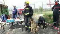 Tremblement de terre: exercice grandeur nature pour les sapeurs-pompiers franciliens