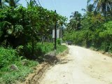 (1006) coyamar (Dominican Republic may.2007)