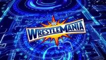 WWE 2K17 WrestleMania 33 Simulation Match of AJ Styles VS Shane McMahon (26)