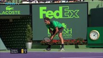 L'amorti magique de Roger Federer contre Tomas Berdych