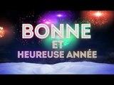 BONNE ANNEE 2014 A TOUS LES FANS IVOIRMIX