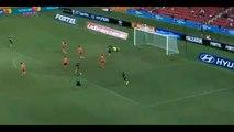 Fabio Ferreira Goal- Brisbane Roar - Central Coast Mariners 02-04-2017