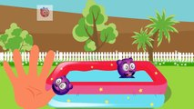 Mega Gummy Bear Bathing Funny Cartoon Finger Family Nursery rhymes for kids - Gummy bear funny_720p'