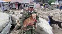 Colombie: des militaires à la rescousse des animaux abandonnés