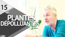 Plantes dépolluantes : INFO ou INTOX ? - ÉPISODE 15