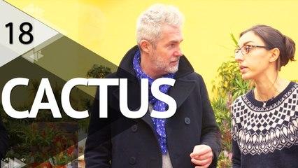 Tout sur les cactus - ÉPISODE 18