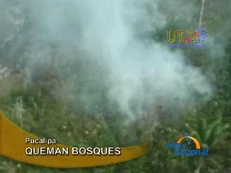 QUEMAN BOSQUES  - PUCALLPA