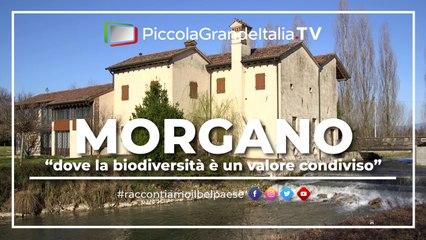 Morgano - Piccola Grande Italia