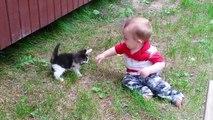 Quoi de plus mignon que des bébés et des chatons Compilation
