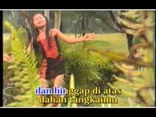 Aisyah Sanselina - Bunga Dan Kupu-Kupu [Official Music Video]