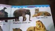 Animal's Name For Kids    Wild Animals Name    Learn Animal Names With Arnab   Read Animal Name  