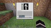 How to Duplicate a pokemon held item on pixelmon 4 0 5 - video