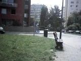 saut du chat dragodadix