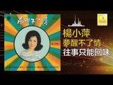 楊小萍 Yang Xiao Ping- 往事只能回味 Wang Shi Zhi Neng Hui Wei (Original Music Audio)
