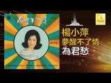 楊小萍 Yang Xiao Ping- 為君愁 Wei Jun Chou (Original Music Audio)