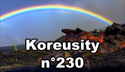 Koreusity n°230
