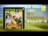 青山 Qing Shan - 請你回來見一面 Qing Ni Hui Lai Jian Yi Mian (Original Music Audio)
