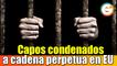 Capos mexicanos condenados a cadena perpetua en Estados Unidos