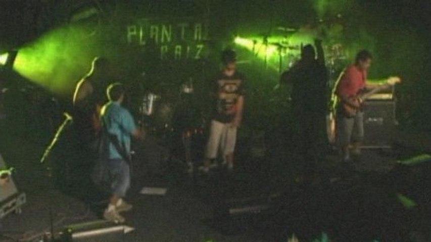 Planta E Raiz - Gueto Do Universal
