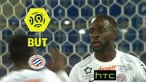 But Jonathan IKONE (88ème) / SM Caen - Montpellier Hérault SC - (0-2) - (SMC-MHSC) / 2016-17