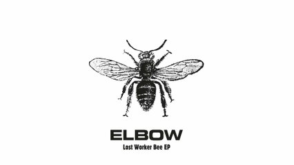Elbow - Roll Call