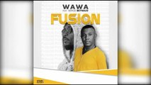 Wawa Salegy Ft. Serge Beynaud - Fusion - audio