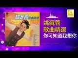 姚苏蓉 Yao Su Rong - 你可知道我想你 Ni Ke Zhi Dao Wo Xiang Ni (Original Music Audio)