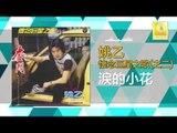 姚乙 Yao Yi - 泪的小花 Lei De Xiao Hua (Original Music Audio)