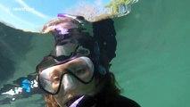Snorkeler takes selfie with manatee