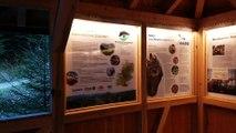Luchspfad Baden-Baden / Nationalpark Schwarzwald / Informationshütte