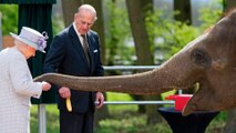Queen Elizabeth Makes Friends With Elephant Named After Her During Zoo Visit -- See the Pics!