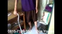 0815-7109-993 (Bpk Yogies) Distributor Biocypress Jawa Tengah, obat asam urat alami dari tumbuhan
