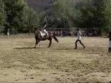 Virgile au trot fête du cheval (2007)