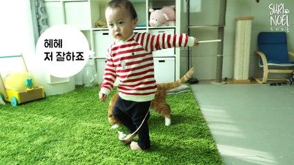 When Baby Plays with Kitties Using Fishing Rod! 아기집사가 낚시대로 놀아줄때 고양이들 반응은 아기집사수업