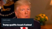 "Syrie : Donald Trump traite Bachar Al-Assad d'""animal"""
