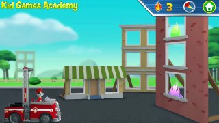 Paw Patr Paw Patrol Academy