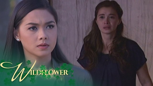 Wildflower: Ivy continues to find her mother | EP 43