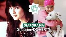 Shannen Doherty : de Beverly Hills à la télé-réalité en passant par Charmed...sa carrière en images
