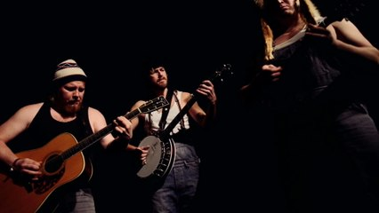 Steve 'n' Seagulls - Black Dog