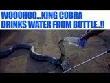 King Cobra drinks water from bottle in Karnataka village, watch video | Oneindia News