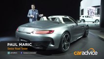 2017 Mercedes-AMG GT C Roadster _ 2016 Los Angeles Motor Sho