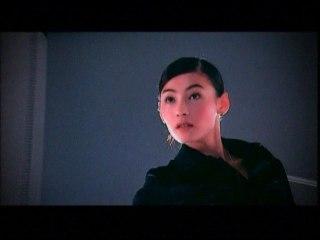 Pai Zhi Zhang - Chun Se