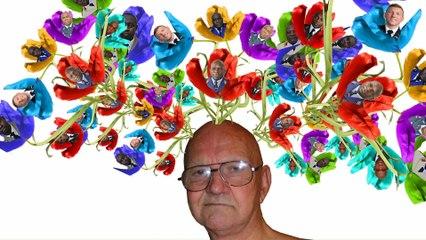 Salut C'est Cool - Des fleurs