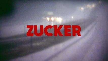 Tocotronic - Zucker