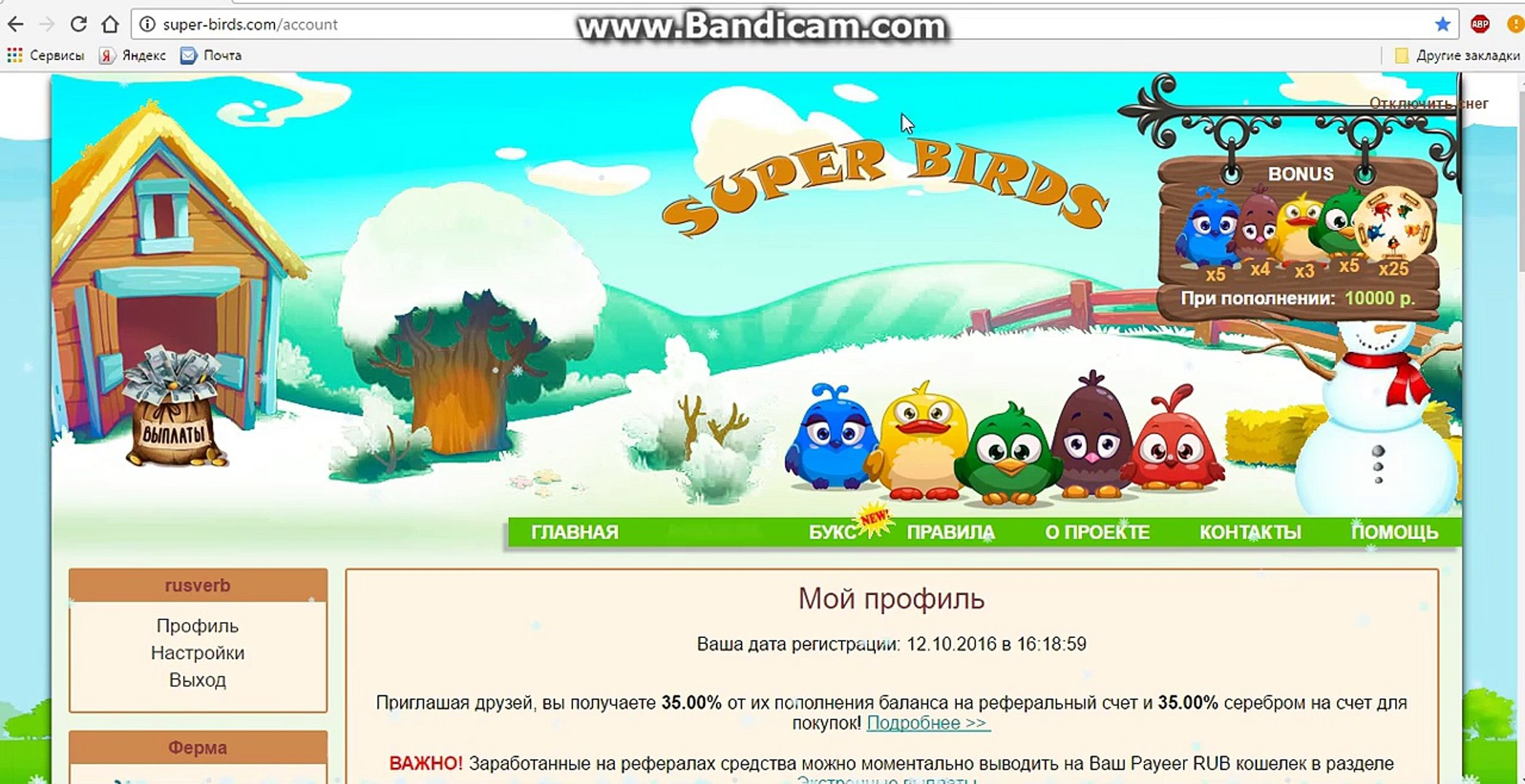 Super Bird - Earn real money daily with Super Birds