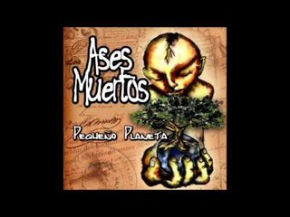 05 Aves Nocturnas